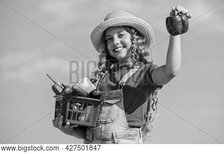 Girl Adorable Child Farming. Homegrown Veggies. Natural Vitamin Nutrition. Crops Harvest. Harvest Se