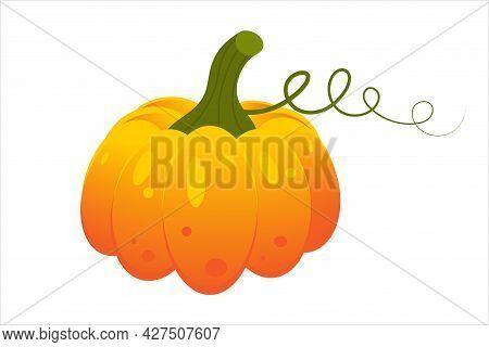 Pumpkin. Autumn Halloween Or Thanksgiving Pumpkin Symbol.