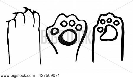 A Set Of Cat's Paws Drawn With A Black Outline, Isolated On A White Background. Kittens In The Doodl