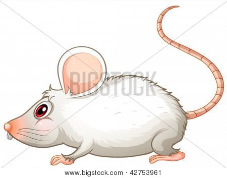 Illustration of a white mouse on a white background