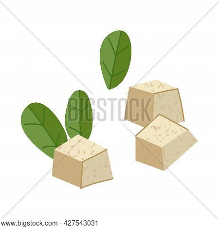 Vector Set Of Pieces Of Tofu Cheese On A White Background. Traditional Chinese Food. Cheese Isolate