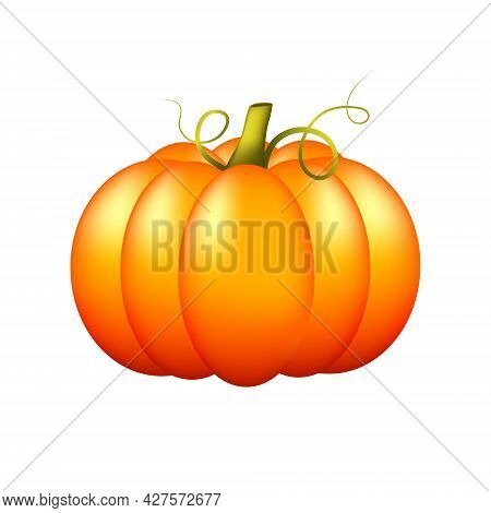 Cute Ripe Pumpkin Isolated On A White Background. Orange Appetizing Bright Pumpkin. Autumn Harvest.