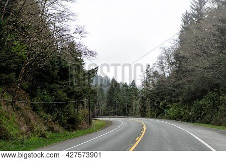 Highway Road Among Forest. Roadway. Oregon Empty Road. Summer Route. Travel Way With Nature