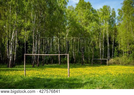 Football Field In The Forest Overgrown With Bright Dandelions