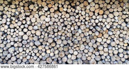 Round Teak Wood Stump Background. Pile Of Cut Forestry Logs Repeating Tileable Background.seamless I