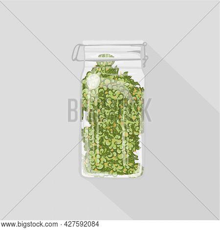 Cute Funny Happy Marijuana Weed Bud In Jar.vector Flat Cartoon Character Illustration Icon Design. C