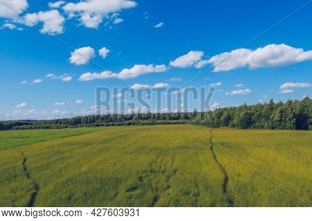Path In The Grass Field. Meadow Picturesque Summer Landscape With Clouds On Blue Marvelous Sky View