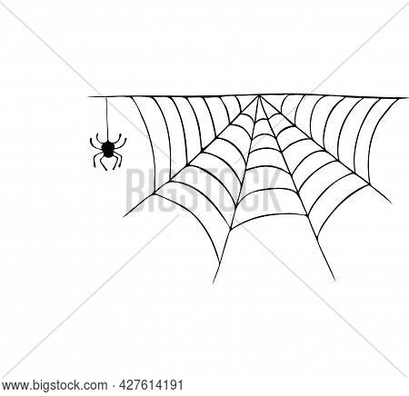 Vector Illustration With A Spider Web And Spider, Insect. Drawn By Hand, Black Ink. Autumn, Hallowee