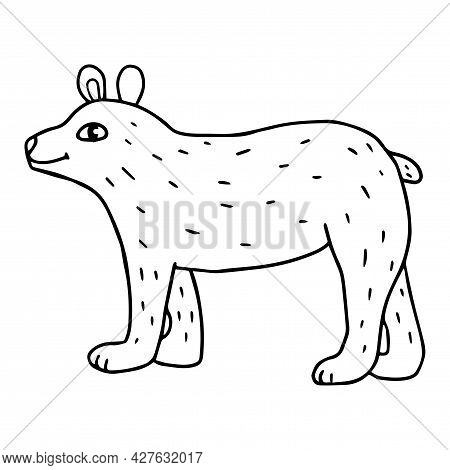 Cartoon Doodle Bear Isolated On White Background. Cute Forest Animal.