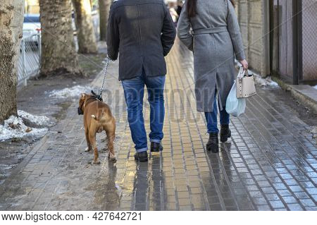 Owner And His Dog Are Similar In Shape Of Their Legs And Gait.