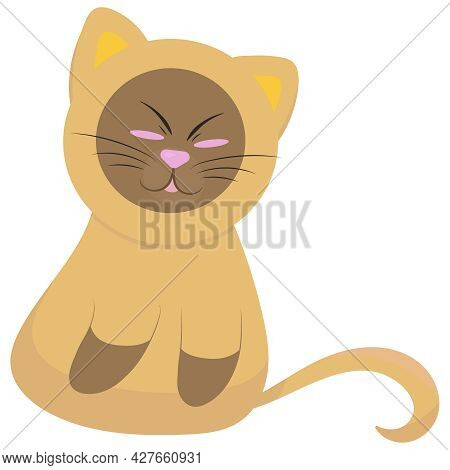 Cute Siamese Kitten Sitting And Squinting Funny, Vector Illustration In Flat Style, Pet