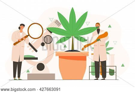 Cannabis Research Concept. Marihuana Product Innovation, Cannabis Research, Cannabinoid Product Scie