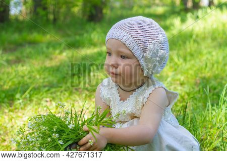 A Child Girl 2 Years Old In A White Dress Collected A Bouquet Of White Flowers In The Forest.