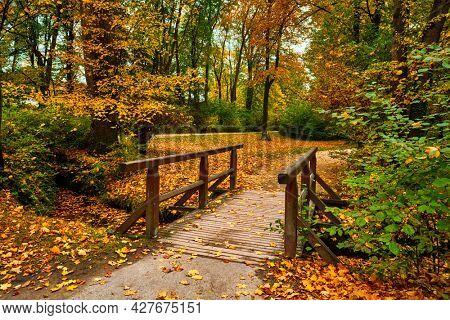 Munich English garden Englischer garten park. Autumn colours on trees and leaves and old wooden bridge over stream. Munchen, Bavaria, Germany