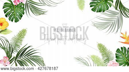 Tropical Banner Arranged From Exotic Emerald Leaves And Exotic Flowers