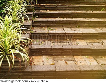 A Brick Stairway Illuminates The Path Up In A Slightly Grassed Garden.