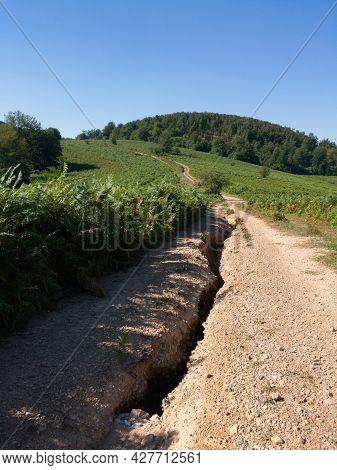 Dirt Road Through Hilly Landscape Of Manjaca Mountain Overgrown With Forests Near Banja Luka, Bosnia