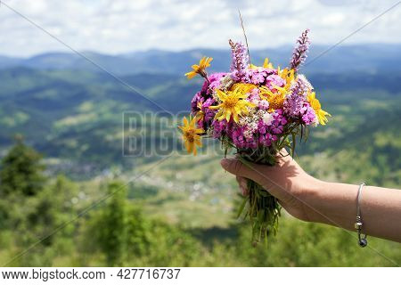 Woman Hand Holding A Colorful Bouquet Of Wild Flowers On The Mountain Top With Mountains Landscape O