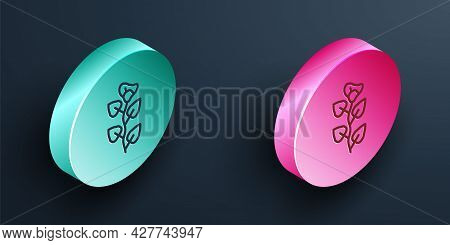 Isometric Line Ivy Branch Icon Isolated On Black Background. Branch With Leaves. Turquoise And Pink
