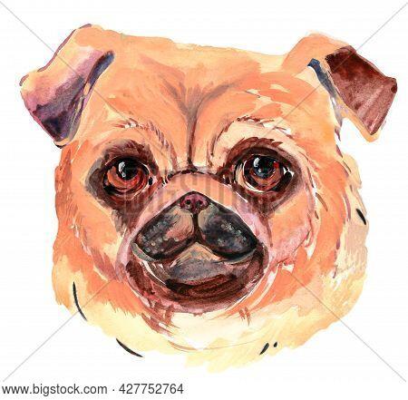 Cool Pug Dog  Watercolori Llustration Pug Dog Head Element. Graphic Animal Print For Home Decoration