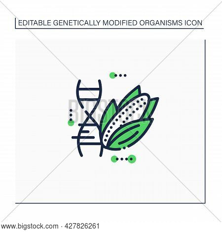 Corn Line Icon. Changing Corn Dna Molecule. Gmo Product. Editing Gene. Microbiology. Genetically Mod