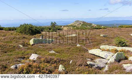 Summer View Of The Rocky Summit Of The Labski Szczyt In Polish Giant Mountains