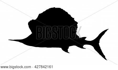 Vector Marlin-swordfish. Isolated Silhouette Of A Sailboat Of A Sea Fish Istiophorus Platypterus Bla