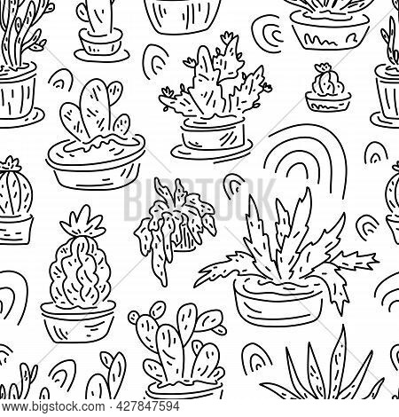 Floral Seamless Pattern. Cactus Ans Succulent. Linear Freehand Drawing.