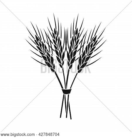 Vector Design Of Barley And Sheaf Icon. Set Of Barley And Malt Vector Icon For Stock.
