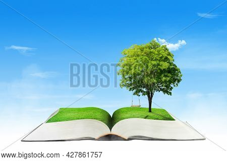 Green Ecology Concept : Green Tree Growth Thru From Opened Book With Blue Sky In Background.