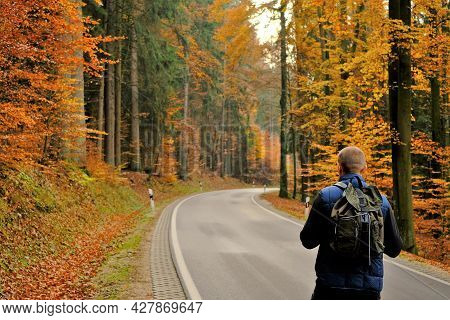 Autumn Travel And Walks.traveler With A Backpack Walks Along The Road In The Autumn Forest.autumn Hi