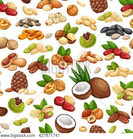 Nuts, Seeds And Grains Seamless Pattern, Vector Illustration. Cola Nut, Sunflower Seeds, Pistachio,