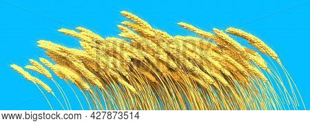 Sheaf Of Rye Or Wheat With Blue Sky - Agricultural Harvest Isolated - Concept Industrial 3d Illustra