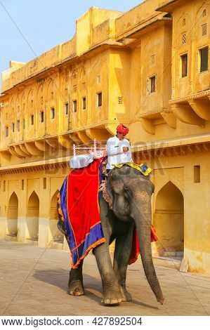 Amer, India - November 13: Unidentified Man Rides Decorated Elephant In Jaleb Chowk In Amber Fort On