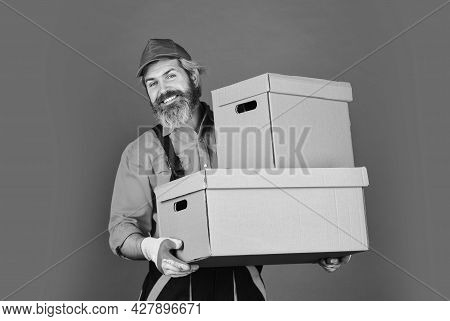Life Just Got Better. Purchase Of New Habitation Or Repair Of Room. Man Wearing Boilersuit Packing B