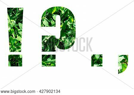 Punctuation Marks Exclamation Mark, Question Mark, Period, Comma From Green Grass Isolated On White
