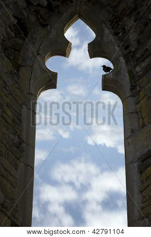 old arch window with no glass and a bird perched in an Irish historic site poster