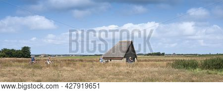 Den Burg, Netherlands, 19 July 2021: People Ride Bicycle Near Typical Barn On The Island Of Texel In
