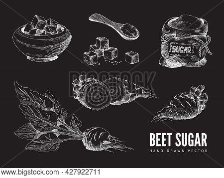 Vector Design Of Chalk Board With Beet Sugar Natural Food Sweetener.