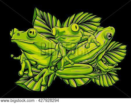 Green Frogs In Different Pose. Vector Illustration.