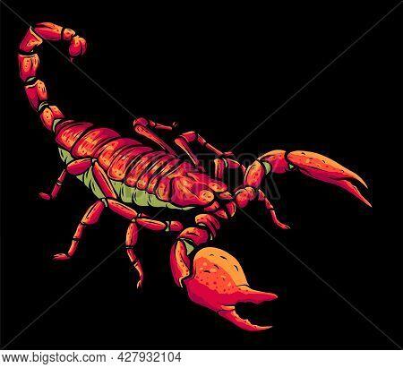 Illustration Of Scorpion Arachnid Insect. Vector Graphics