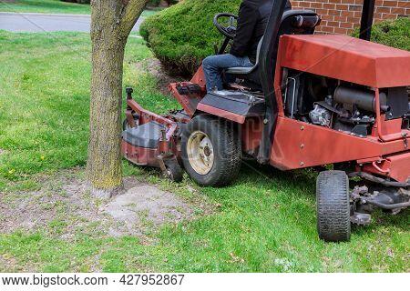 Gardening Activity, Lawn Mower Cutting The Grass Driven Lawn Mower In Sunny Garden