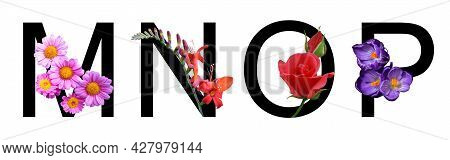 Flower Font Alphabet M, N, O, P Made Of Real Flowers. Collection Of Flora Font For Decoration In Spr