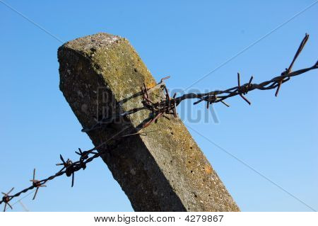 Cement fence post with moss with old barbed wire bands attached against blue sky poster