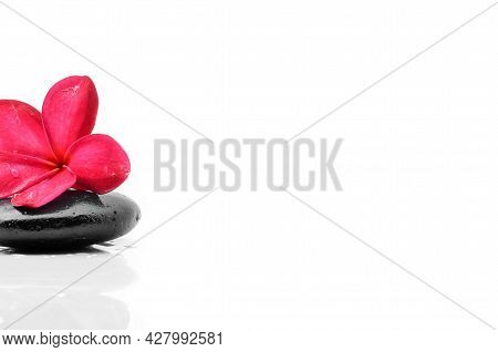 Images Of Zen Stones With Frangipani Flower