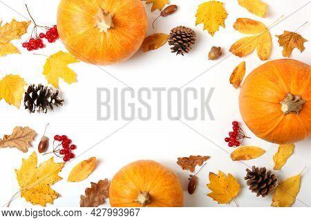 Orange Pumpkins Close-up. Thanksgiving Background. Autumn Background.