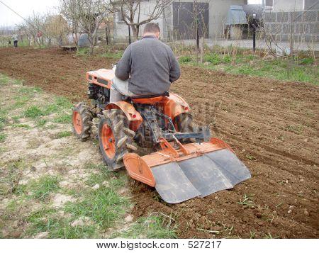 Tractor On Garden
