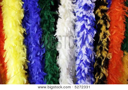 Picture of a group of hanging colorful feather boas. poster