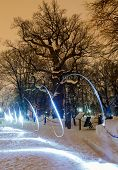 lonely oak tree at winter night and the light pen poster
