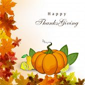 Happy Thanksgiving Day concept, Blank tag, sticker or label with pumpkin and maple leaves for your messages or wishes.  poster